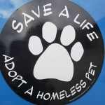 Save a life paw_IG